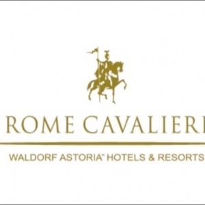 Risultato immagine per logo rome cavalieri